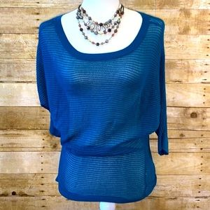 Express Blue Sheer Knit Sweater Size Small